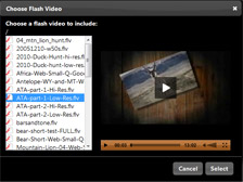 IMAGE: Add Video Browser